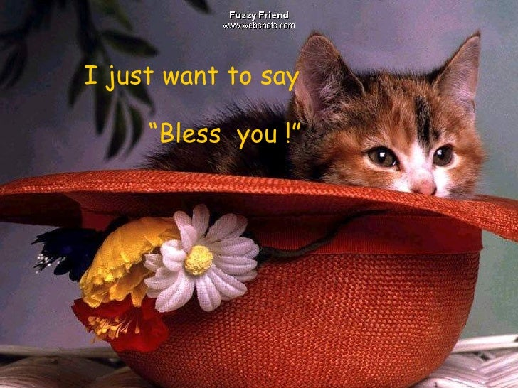 """I just want to say """" Bless  you !"""""""