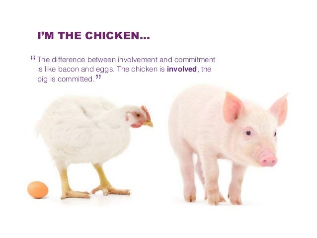 Commitment Chicken Pig Bacon Eggs: Nuon, Online Targeting (with CRM Data)