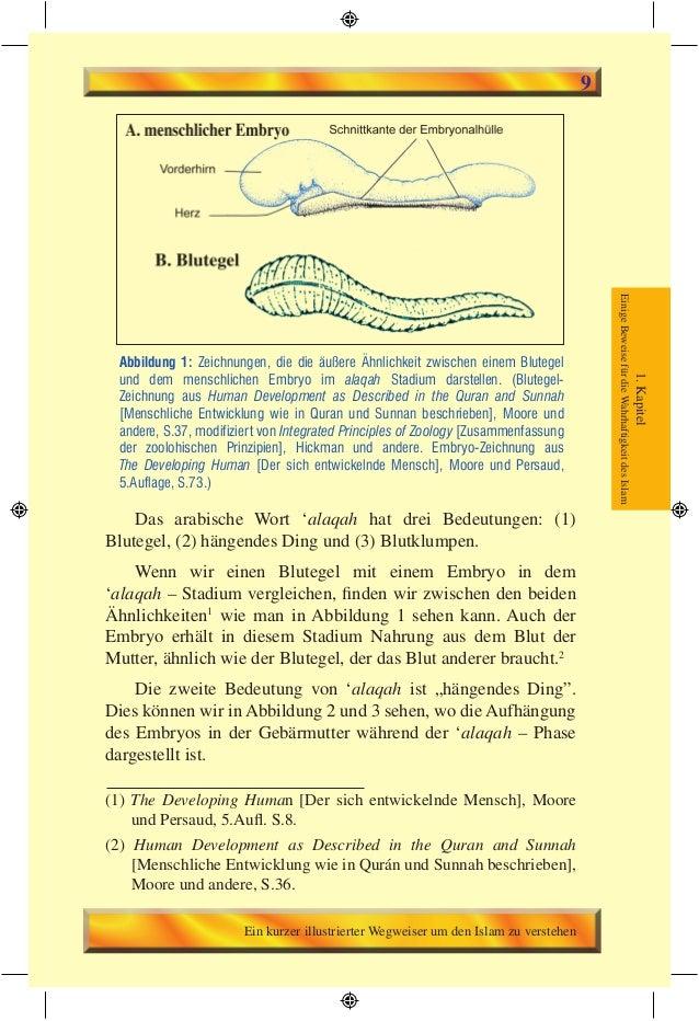 Schön Wesentlich Von Der Menschlichen Anatomie Und Physiologie 9 ...