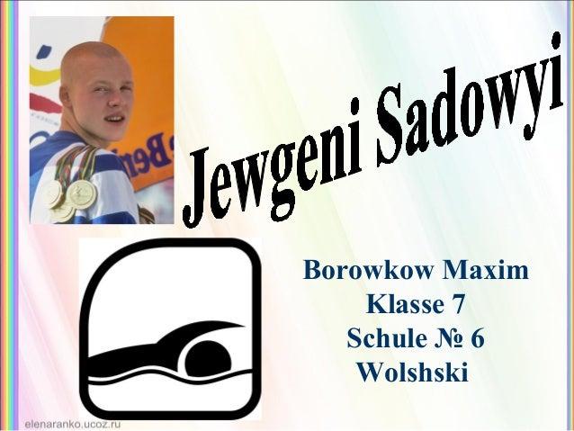 Borowkow Maxim Klasse 7 Schule № 6 Wolshski