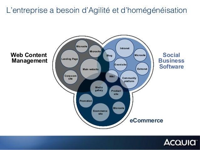 L'entreprise a besoin d'Agilité et d'homégénéisation                         Microsite                                    ...