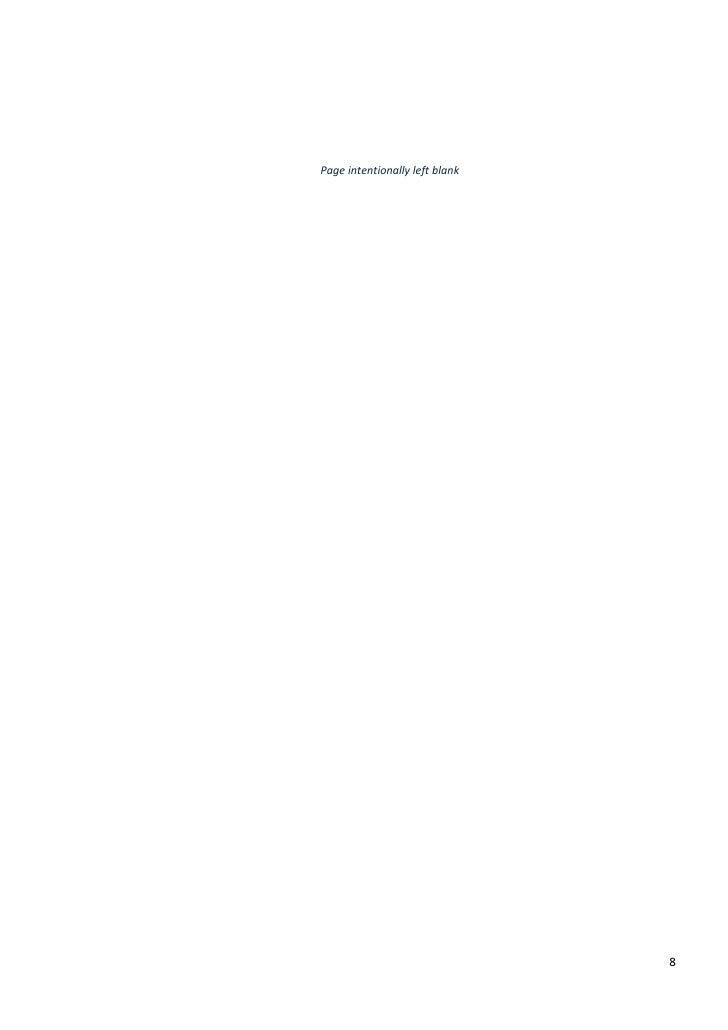Deal Book Of Russian Internet - Fast Lane Ventures
