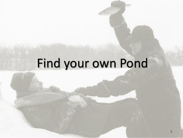 3 Find your own Pond