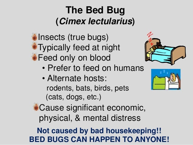 Of Where Bed Bugs Are Found Pctonline