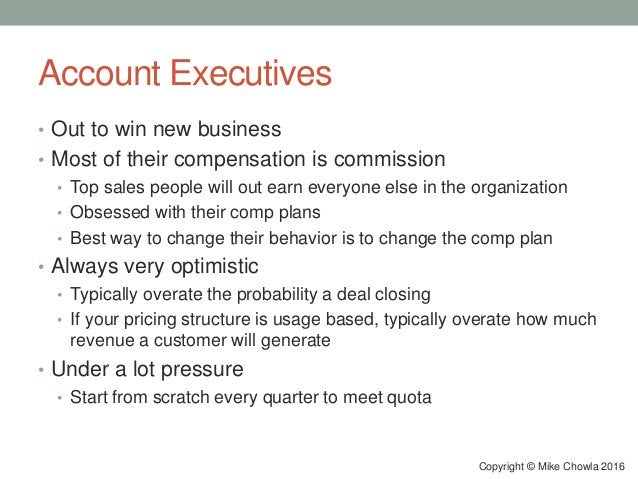 Account Executives • Out to win new business • Most of their compensation is commission • Top sales people will out earn e...