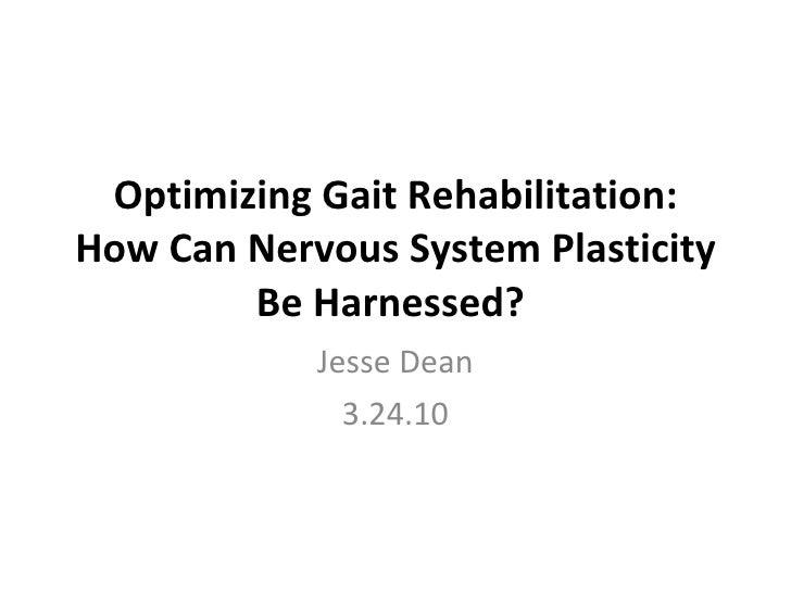 Optimizing Gait Rehabilitation: How Can Nervous System Plasticity Be Harnessed?   Jesse Dean 3.24.10