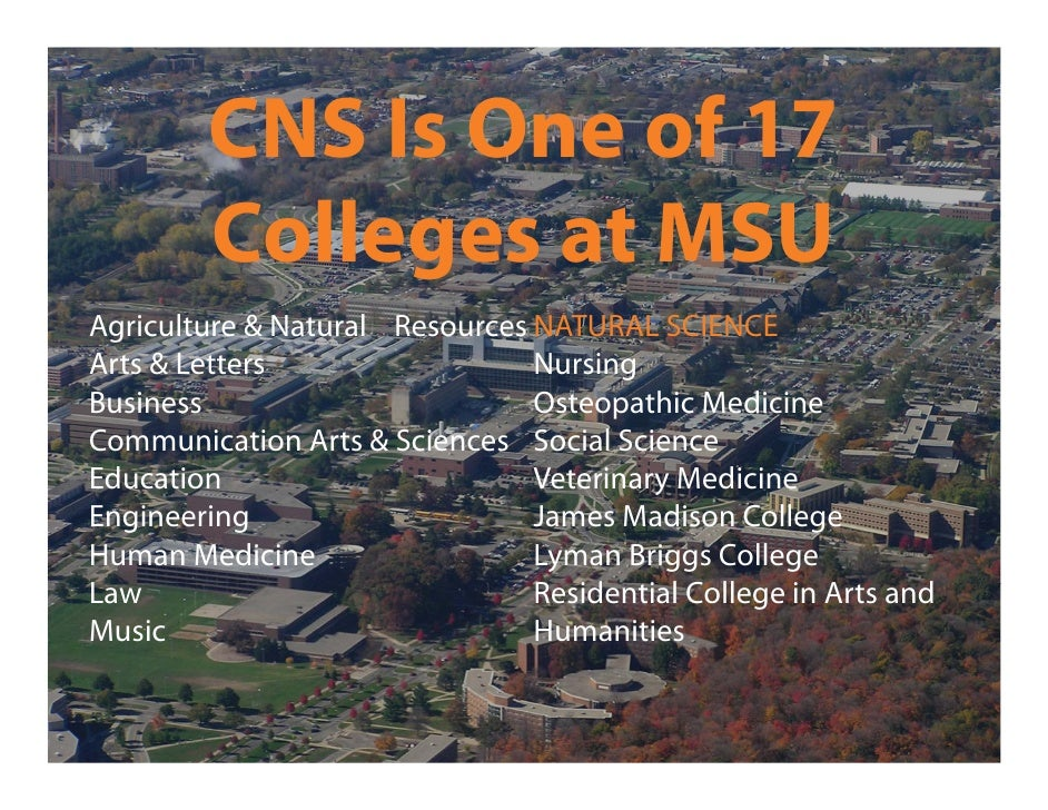 College Of Natural Science Requirements Michigan State University