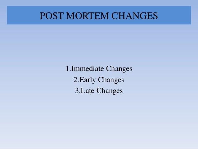 Death & changes after death Slide 3