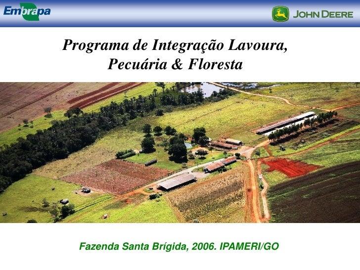Programa de Integração Lavoura,      Pecuária & Floresta  Fazenda Santa Brígida, 2006. IPAMERI/GO