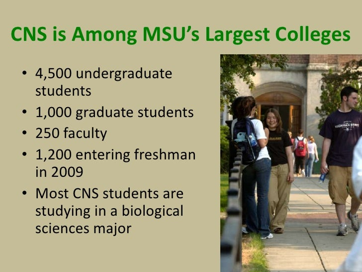 Msu College Of Natural Science Majors