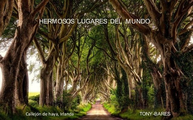 HERMOSOS LUGARES DEL MUNDO TONY-BARESCallejón de haya, Irlanda