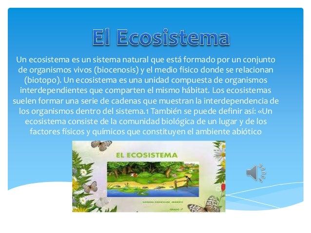 Un ecosistema es un sistema natural que está formado por un conjunto de organismos vivos (biocenosis) y el medio físico do...