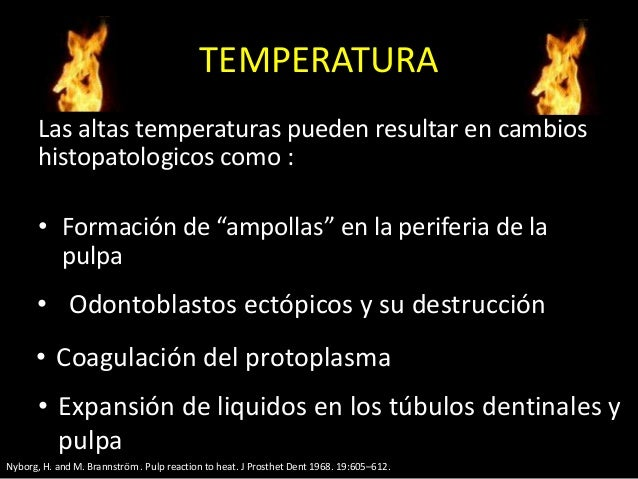 """TEMPERATURALas altas temperaturas pueden resultar en cambioshistopatologicos como :• Formación de """"ampollas"""" en la perifer..."""