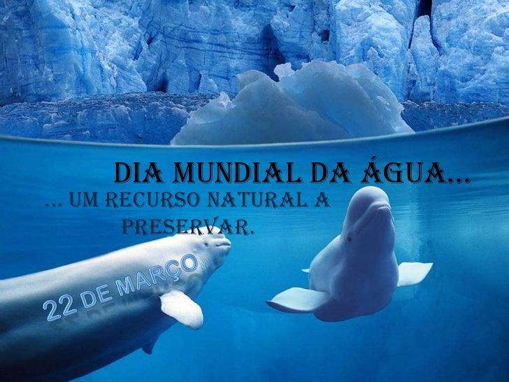 Dia Mundial da água…<br />... um recurso natural a preservar.<br />22 de MARÇO<br />