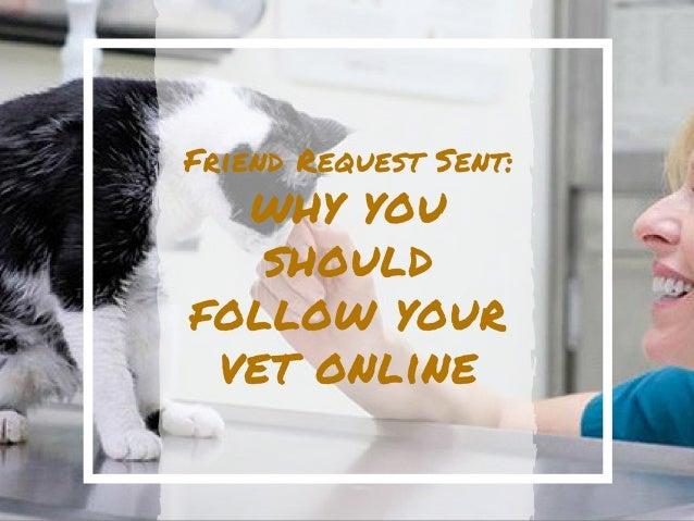 Friend Request Sent: Why You Should Follow Your Vet Online