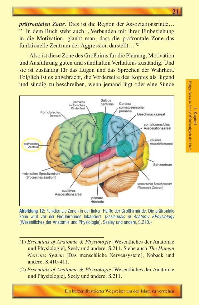 Atemberaubend Anatomie Und Physiologie Für Die Sprach Sprache Und ...