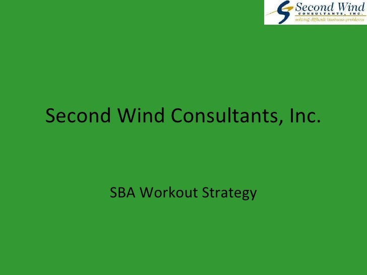 Second Wind Consultants, Inc. SBA Workout Strategy