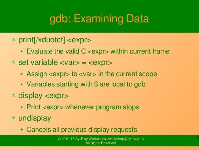 gdb print variable binary options