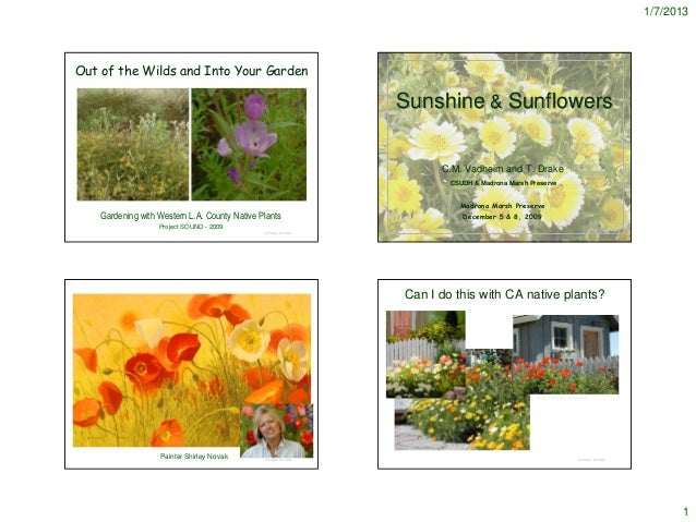 1/7/2013Out of the Wilds and Into Your Garden                                                                 Sunshine & S...