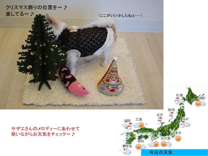 クリスマス飾りの位置を~♪直してる~♪              (ここがいいかしらねぇ・・・) サザエさんのメロディーにあわせて 歌いながらお天気をチェック~♪                                        今...