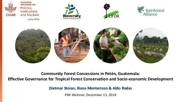 Community Forest Concessions in Petén, Guatemala: Effective Governance for Tropical Forest Conservation and Socio-economic...
