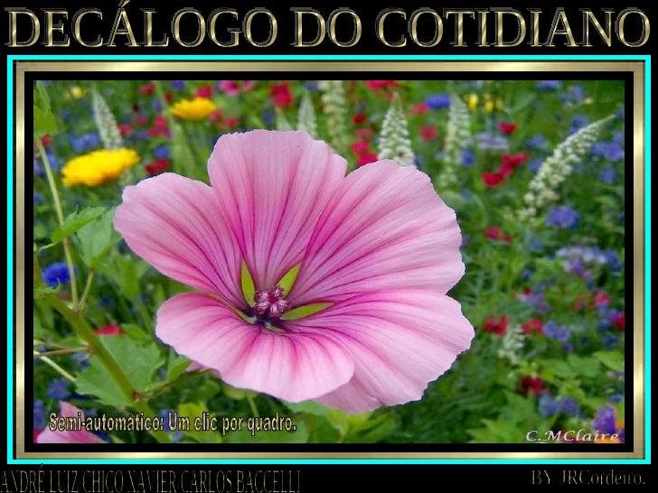 DECÁLOGO DO COTIDIANO ANDRÉ LUIZ/CHICO XAVIER/CARLOS BACCELLI BY JRCordeiro. Semi-automático: Um clic por quadro.