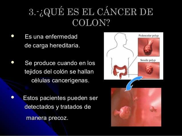 Decalogo sobre el cancer de colon - Alimentos que evitan el cancer ...