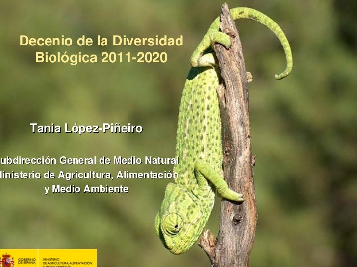 Decenio de la Diversidad       Biológica 2011-2020       Tania López-PiñeiroSubdirección General de Medio Natural ubdirecc...