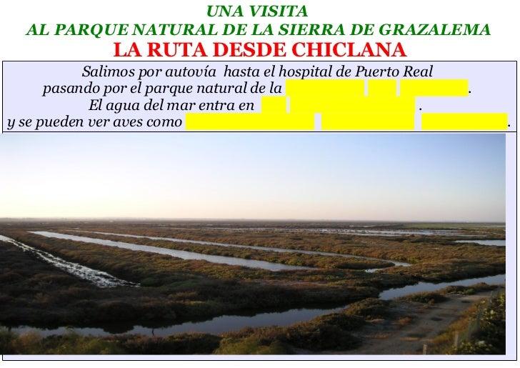 UNA VISITA  AL PARQUE NATURAL DE LA SIERRA DE GRAZALEMA               LA RUTA DESDE CHICLANA           Salimos por autovía...