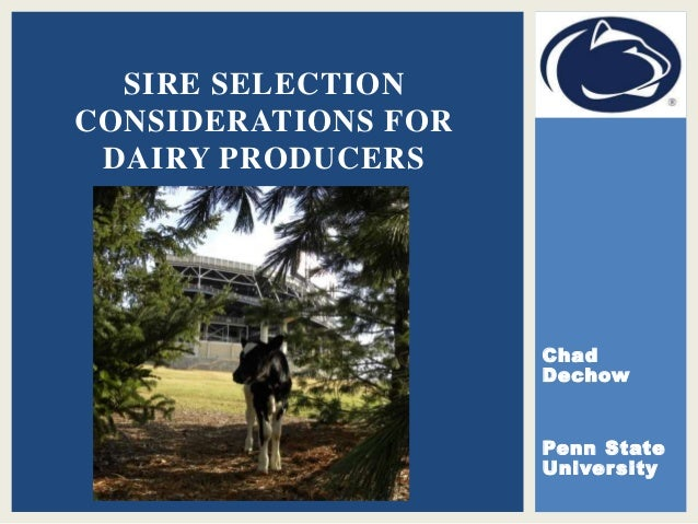 Chad Dechow Penn State University SIRE SELECTION CONSIDERATIONS FOR DAIRY PRODUCERS