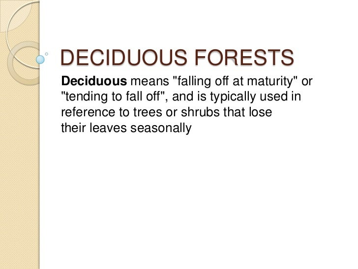 "DECIDUOUS FORESTSDeciduous means ""falling off at maturity"" or""tending to fall off"", and is typically used inreference to t..."