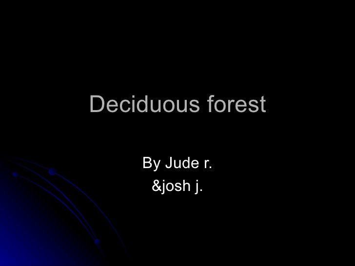 Deciduous forest By Jude r. &josh j.