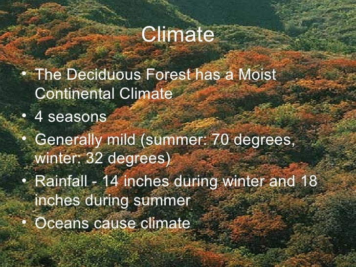 deciduous forest that is leafless during winter and located in the eastern half of north america The north american deciduous forest is located in the eastern are born during the winter whil the found in the eastern half of north america.