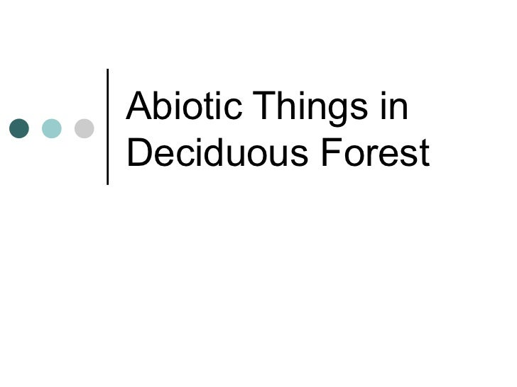 Abiotic Things inDeciduous Forest