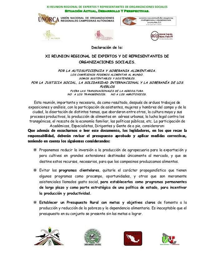 XI REUNION REGIONAL DE EXPERTOS Y REPRESENTANTES DE ORGANIZACIONES SOCIALES                       Situación Actual, Desarr...