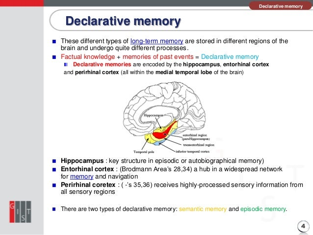 declarative memory Book t of c chap t of c prev page next page this is the 2007 version click here for the 2017 chapter 06 table of contents declarative vs procedural memory declarative memory is is memory for repeatedly encountered facts and data such as who is president, what is the square root of 25, and where you were born.