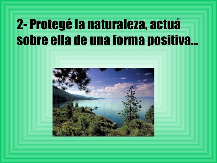 2- Protegé la naturaleza, actuá sobre ella de una forma positiva...