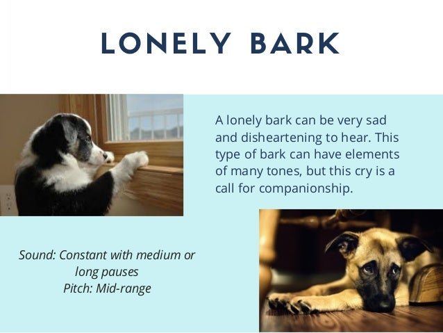 LONELY BARK A lonely bark can be very sad and disheartening to hear. This type of bark can have elements of many tones, bu...
