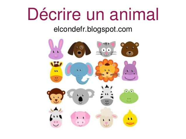 Décrire un animal elcondefr.blogspot.com