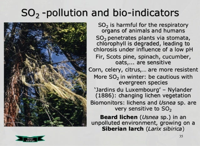 Ecological problems and solutions
