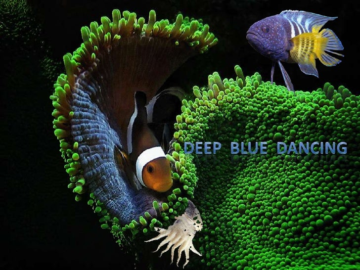 Deep  blue  dancing<br />