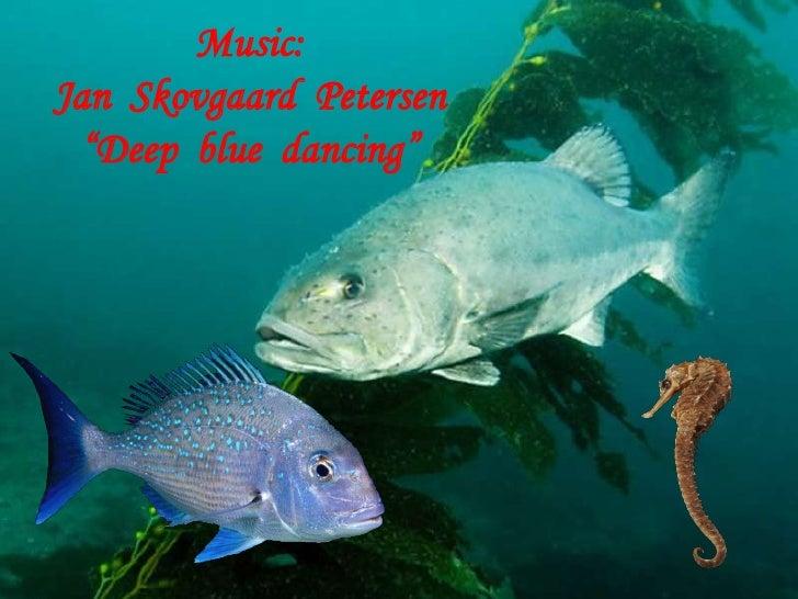 """Music: Jan  Skovgaard  Petersen """"Deep  blue  dancing""""<br />"""