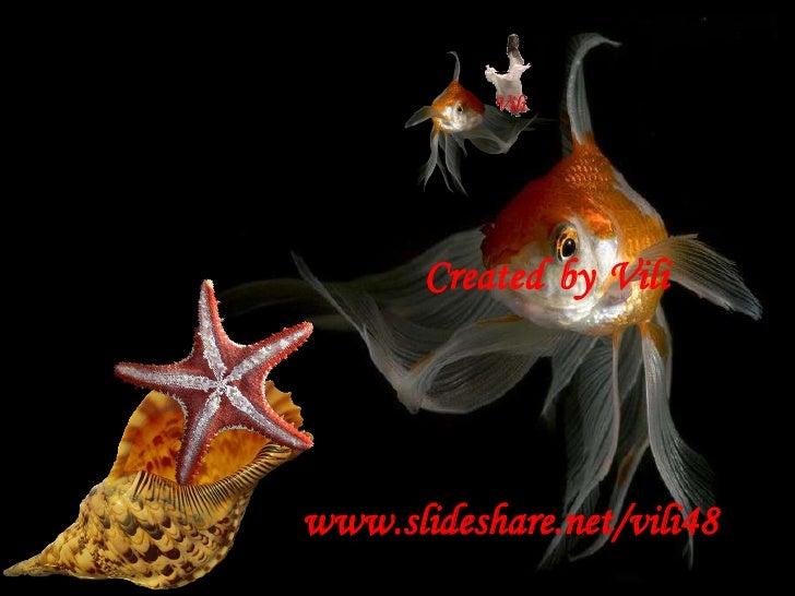 CreatedbyVili<br />www.slideshare.net/vili48<br />