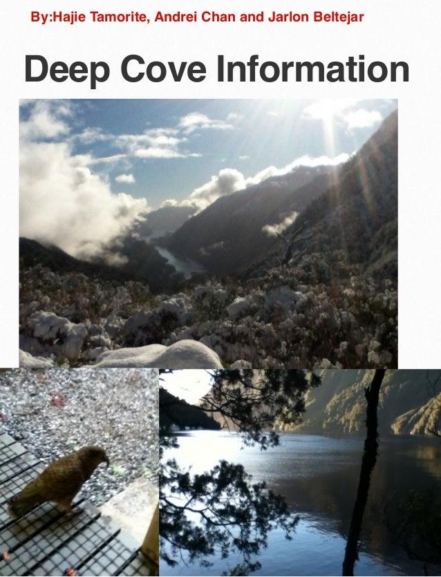 By:Hajie Tamorite, Andrei Chan and Jarlon Beltejar  Deep Cove Information