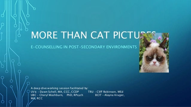 MORE THAN CAT PICTURES E-COUNSELLING IN POST-SECONDARY ENVIRONMENTS A deep dive working session facilitated by: UVic – Daw...