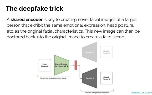 The deepfake trick Deepfakes: Trick or Treat? A shared encoder is key to creating novel facial images of a target person t...