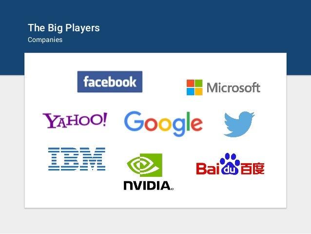 The Big Players Companies