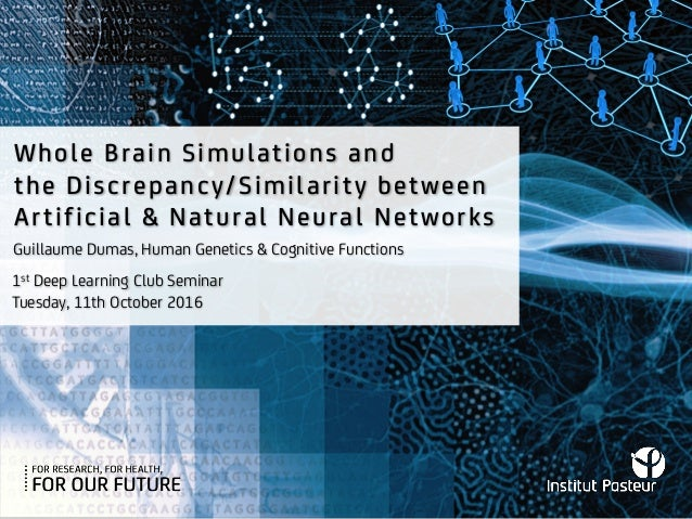 Whole Brain Simulations and the Discrepancy/Similarity between Artificial & Natural Neural Networks 1st Deep Learning Club...