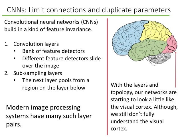 CNNs: Limit connections and duplicate parameters Convolutional neural networks (CNNs) build in a kind of feature invarianc...