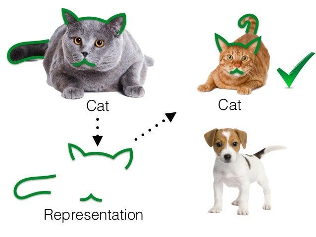 Cat Representation Cat Not a cat Machine Learning